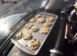 arizona heat car cookies